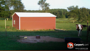 1517729719-double-wide-shed-metal-sheds-and-carports.jpg