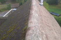 Roof Cleaning Without Pressure Washing A Great Read Clean Carport Roof.jpg
